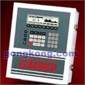 GE GM868/XGM868通用型超声波气体流量计