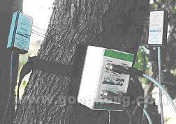 格林斯潘 SF系列茎流传感器