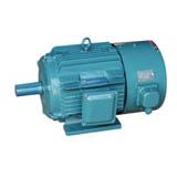 中源变频调速电机(变频专用电机)