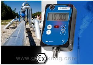 堡盟 适用于极端环境的数字式压力表(校验仪)Barflex