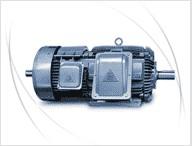 东元(TECO)电机 AEKT系列起重机电动机