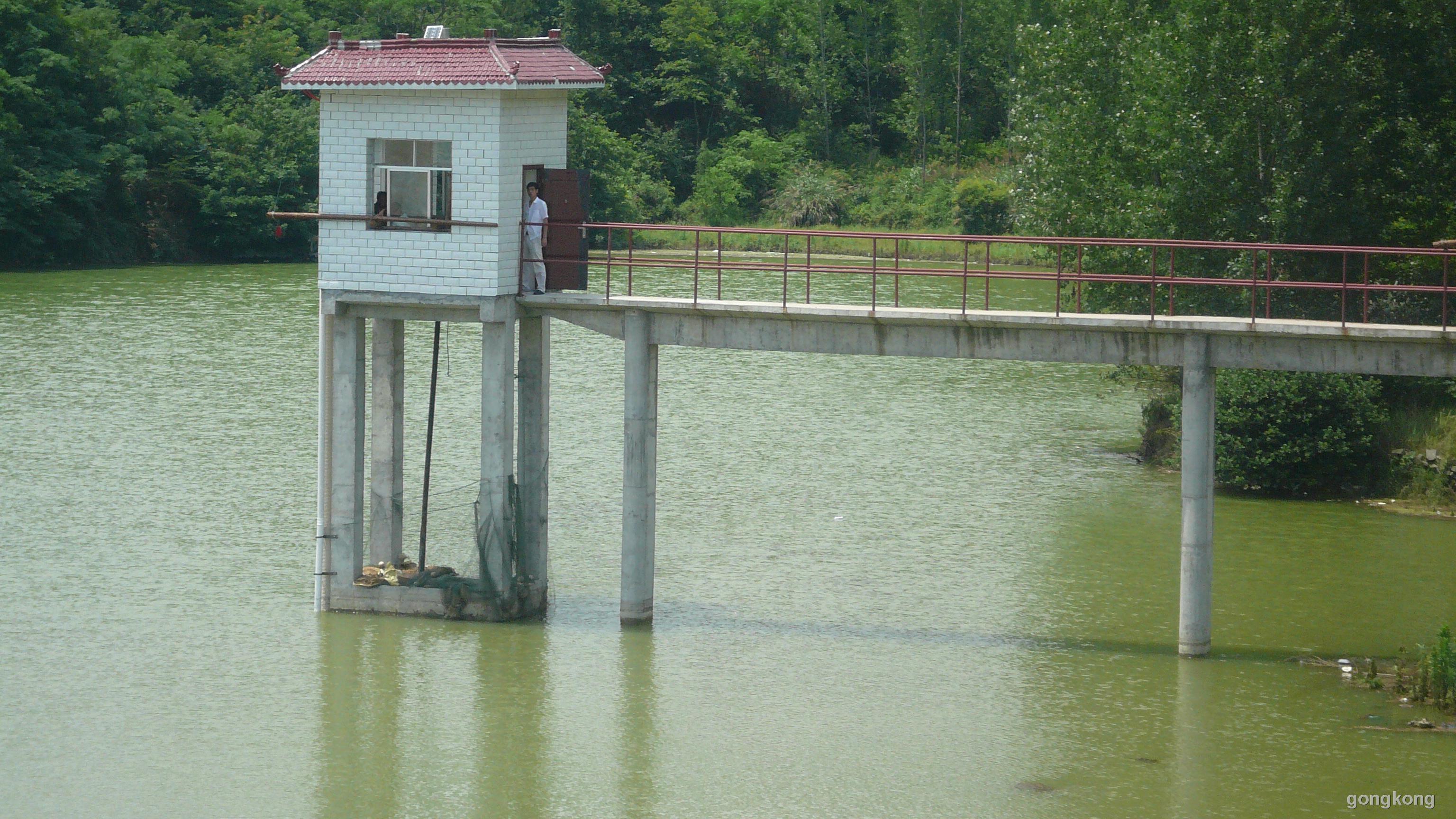水池水位的连续动态测量