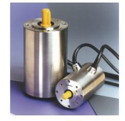 诺信泰 BFS系列 全不锈钢防水伺服电机