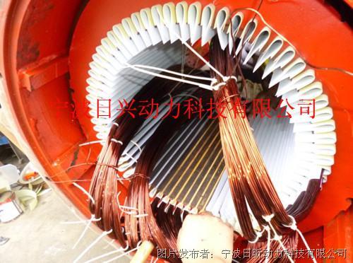 包括发电机励磁绕组,励磁电源